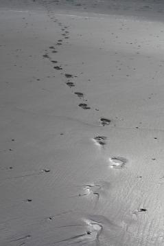 zand voetstappen